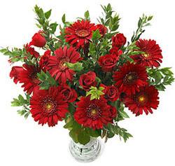 5 adet kirmizi gül 5 adet gerbera aranjmani  Niğde çiçek gönderme