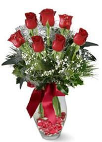Niğde hediye çiçek yolla  7 adet kirmizi gül cam vazo yada mika vazoda