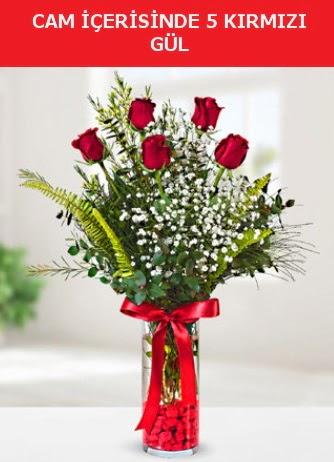 Cam içerisinde 5 adet kırmızı gül  Niğde çiçek satışı