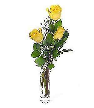 Niğde hediye çiçek yolla  3 adet kalite cam yada mika vazo gül