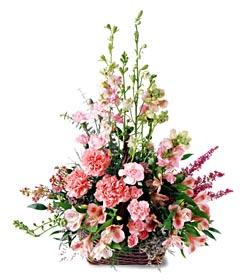 Niğde çiçek yolla  mevsim çiçeklerinden özel