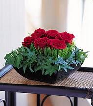 Niğde çiçek satışı  10 adet kare mika yada cam vazoda gül tanzim