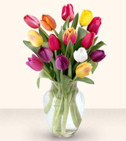 Niğde ucuz çiçek gönder  13 adet cam yada mika vazoda laleler