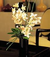 Niğde ucuz çiçek gönder  cam yada mika vazo içerisinde dal orkide