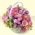 Niğde çiçek online çiçek siparişi  bir sepet dolusu kir çiçegi  Niğde güvenli kaliteli hızlı çiçek