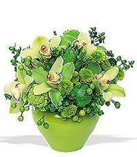 cam yada mika vazoda 5 adet orkide   Niğde çiçek servisi , çiçekçi adresleri