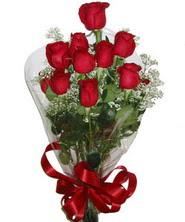 9 adet kaliteli kirmizi gül   Niğde çiçek servisi , çiçekçi adresleri