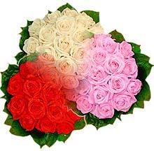 3 renkte gül seven sever   Niğde çiçek gönderme sitemiz güvenlidir