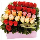 15 adet renkli gül ve cam   Niğde çiçekçi telefonları