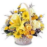 sadece sari çiçek sepeti   Niğde güvenli kaliteli hızlı çiçek