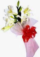 Niğde çiçek gönderme sitemiz güvenlidir  ince vazoda gerbera ve ayi