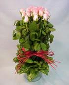 13 adet pembe gül silindirde   Niğde yurtiçi ve yurtdışı çiçek siparişi