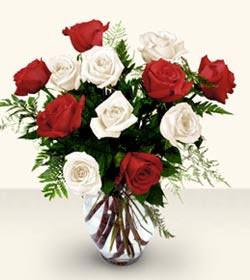 Niğde internetten çiçek siparişi  6 adet kirmizi 6 adet beyaz gül cam içerisinde