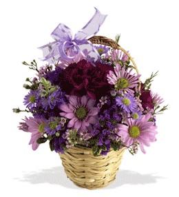 Niğde internetten çiçek siparişi  sepet içerisinde krizantem çiçekleri