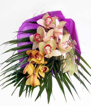 Niğde çiçekçiler  1 adet dal orkide buket halinde sunulmakta