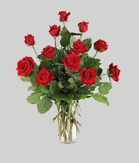Niğde çiçekçiler  11 adet kirmizi gül vazo halinde