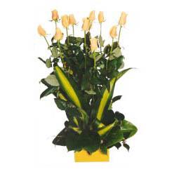 12 adet beyaz gül aranjmani  Niğde anneler günü çiçek yolla
