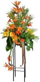 Niğde çiçek satışı  perförje tanzimi dügün nikah ve açilislara