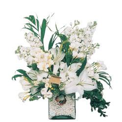 Niğde hediye çiçek yolla  sadece beyazlardan olusmus mevsim cam yada mika tanzim