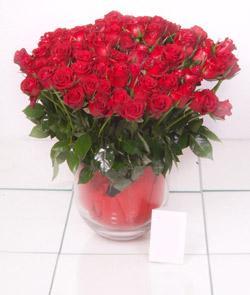 Niğde internetten çiçek satışı  101 adet kirmizi gül