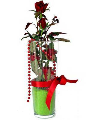 Niğde çiçek siparişi sitesi  Cam yada mika içerisinde 9 adet kirmizi gül - sevdiklerinize özel