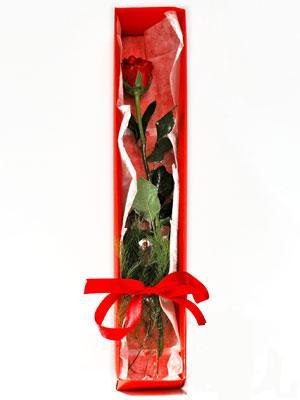 Niğde çiçek online çiçek siparişi  1 adet kutuda gül
