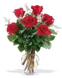 Niğde güvenli kaliteli hızlı çiçek  7 adet kirmizi gül cam yada mika vazoda sevenlere