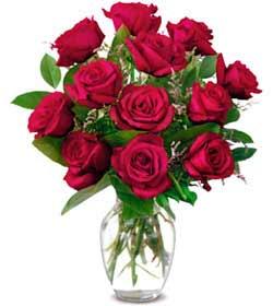 Niğde çiçek siparişi sitesi  1 düzine kirmizi gül sevenlere özel vazo gülleri