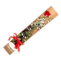 Niğde çiçek gönderme sitemiz güvenlidir  Kutuda tek 1 adet kirmizi gül çiçegi