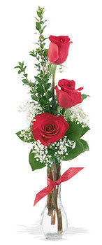 Niğde çiçekçiler  mika yada cam vazoda 3 adet kirmizi gül