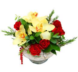 Niğde online çiçekçi , çiçek siparişi  1 adet orkide 5 adet gül cam yada mikada