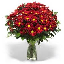 Niğde yurtiçi ve yurtdışı çiçek siparişi  Kir çiçekleri cam yada mika vazo içinde