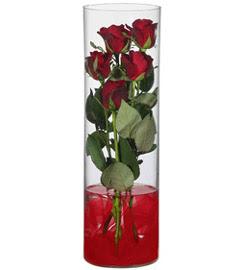 cam içerisinde 7 adet kirmizi gül  Niğde ucuz çiçek gönder