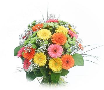 13 adet gerbera çiçegi buketi  Niğde çiçek siparişi sitesi