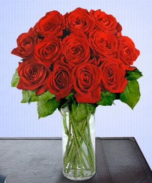 Anneme 12 adet cam içerisinde kirmizi gül  Niğde çiçek satışı