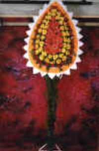 Niğde İnternetten çiçek siparişi  dügün açilis çiçekleri  Niğde çiçek gönderme sitemiz güvenlidir