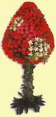 Niğde online çiçekçi , çiçek siparişi  dügün açilis çiçekleri  Niğde cicekciler , cicek siparisi