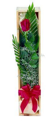 1 adet kutuda kirmizi gül  Niğde güvenli kaliteli hızlı çiçek