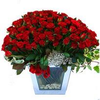 Niğde ucuz çiçek gönder   101 adet kirmizi gül aranjmani