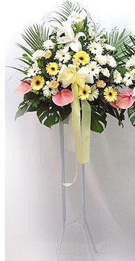 Niğde çiçek siparişi sitesi   perförje çiçegi dügün çiçekleri