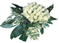 Niğde hediye çiçek yolla  9 Beyaz gül Özel kisiler için