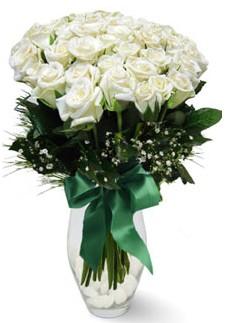 19 adet essiz kalitede beyaz gül  Niğde ucuz çiçek gönder