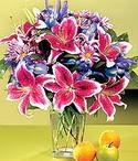 Niğde 14 şubat sevgililer günü çiçek  Sevgi bahçesi Özel  bir tercih