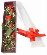 kutu içinde 5 adet kirmizi gül  Niğde hediye çiçek yolla