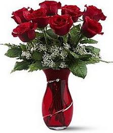 Vazo içinde 8 adet kirmizilar içinde güller  Niğde hediye çiçek yolla