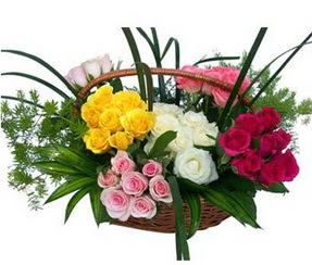 Niğde çiçek yolla  35 adet rengarenk güllerden sepet tanzimi