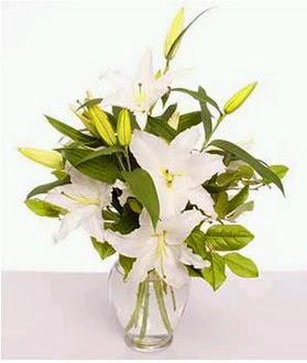 Niğde online çiçekçi , çiçek siparişi  2 dal cazablanca vazo çiçeği