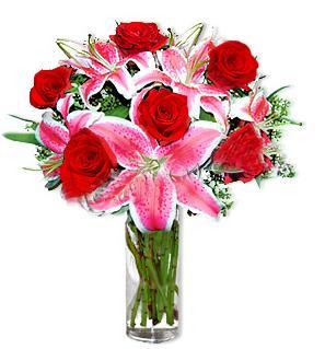 Niğde yurtiçi ve yurtdışı çiçek siparişi  1 dal cazablanca ve 6 kırmızı gül çiçeği