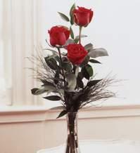 Niğde çiçek , çiçekçi , çiçekçilik  Vazoda 3 adet güzel gül