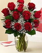 Sevgilime hediye 9 adet 1.ci kalite gül  Niğde online çiçek gönderme sipariş